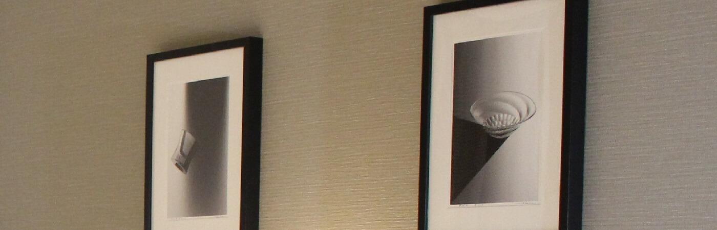 ニュース|お知らせ|ベストウェスタンホテルフィーノ東京秋葉原【公式】JR秋葉原・御徒町、地下鉄末広町・仲御徒町/4駅が徒歩圏内!