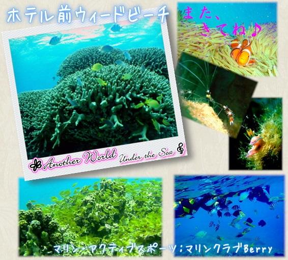 ベストウェスタン沖縄幸喜ビーチ|アクティビティ|マリンアクティブスポーツ