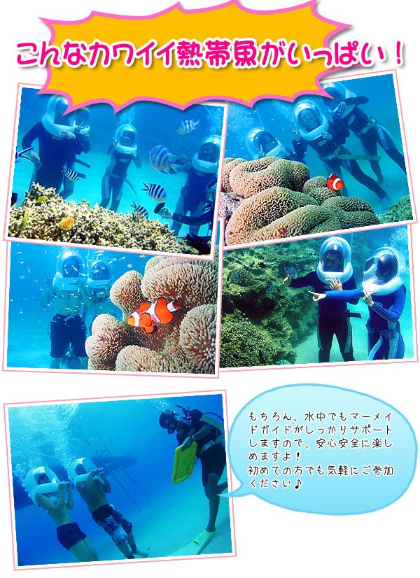ベストウェスタンリゾート沖縄幸喜ビーチ|アクティビティ|マーメイドツアー