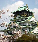 大阪城公園(大阪城)