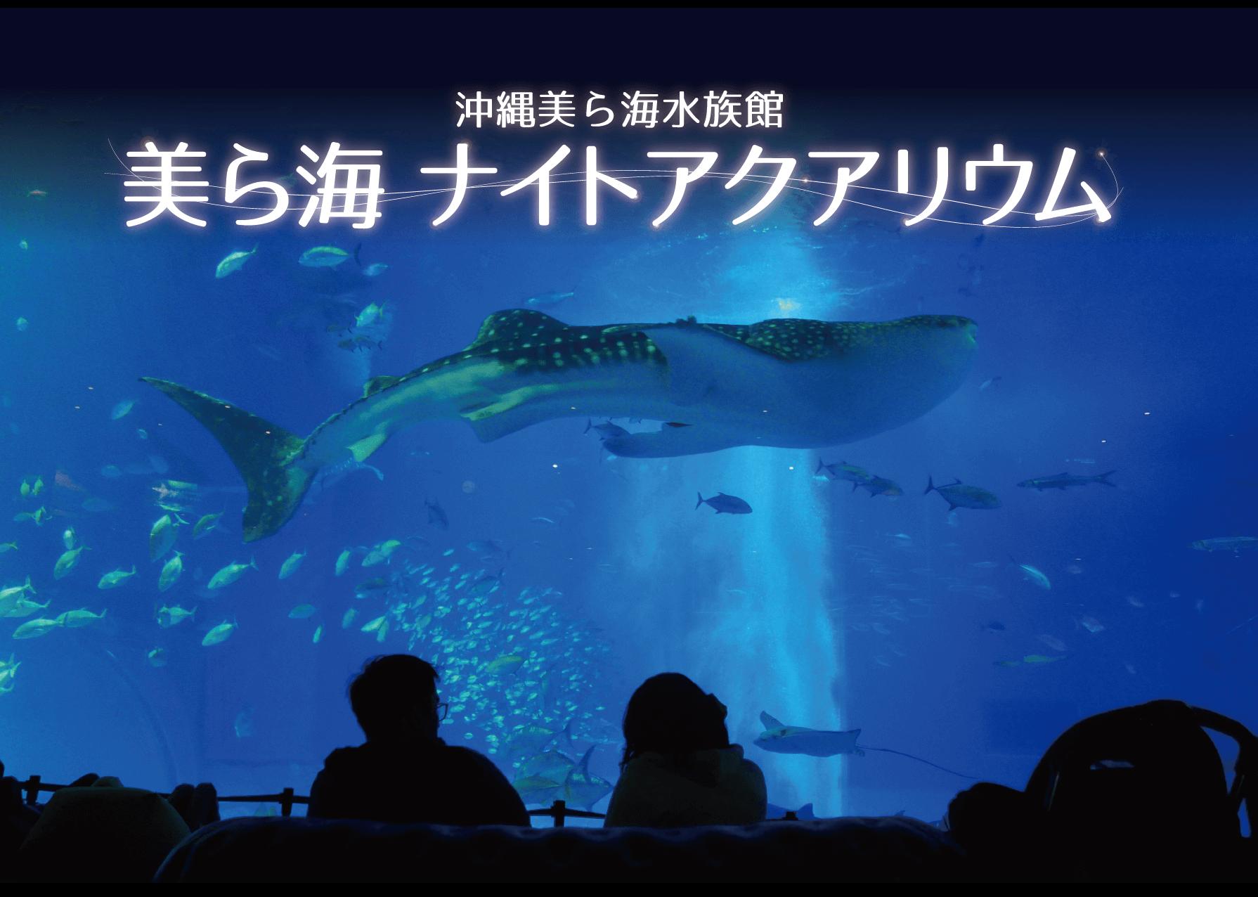 期間限定★美ら海ナイトアクアリウムバスツアーを開催!
